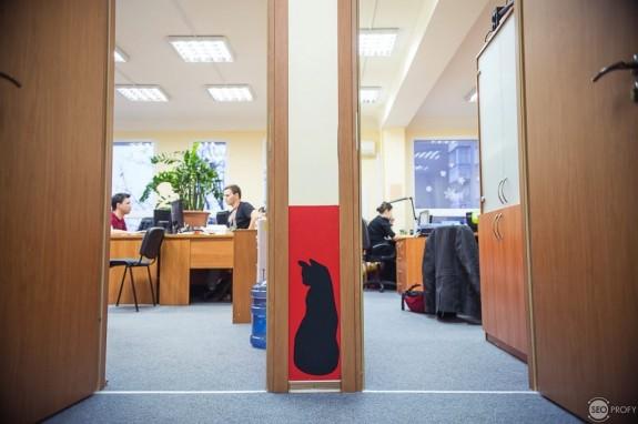 """Интервью с Александром Колбом: """"Масштаб личности определяется масштабом тех проблем, которые он решает."""""""