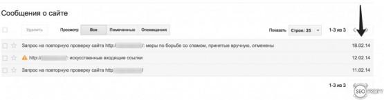хронология запросов на пересмотр в Google