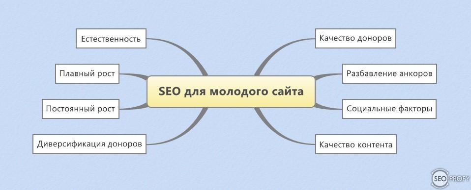 Продвижение молодого сайта влияет ли cms на продвижение сайта