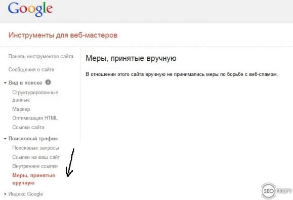 Санкций Google нет