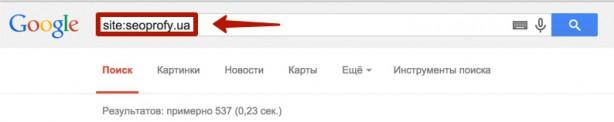проверка индексации страниц сайта в Google