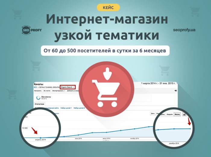 Кейс: Интернет-магазин узкой тематики. От 60 до 500 хостов в сутки за 6 месяцев
