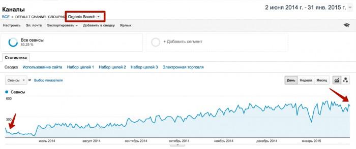 Рост трафика узко нишевого сайта в сутки