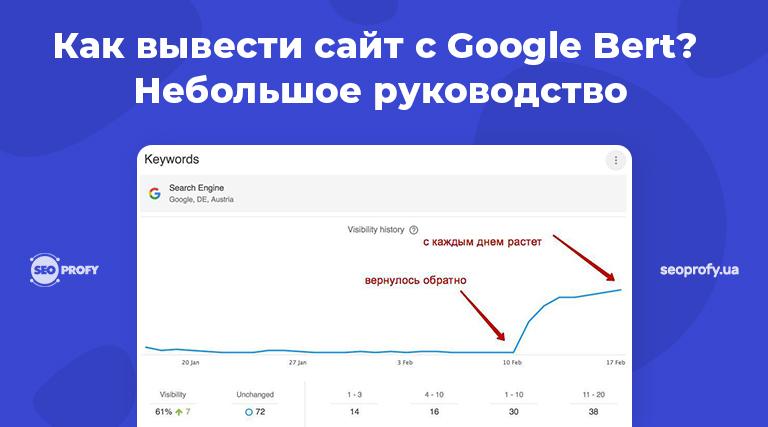 Как вывести сайт с Google Bert – небольшое руководство